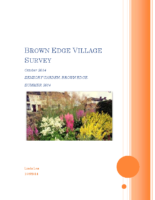 brown_edge_village_survey